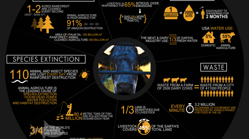 cowspiracy infographic metric